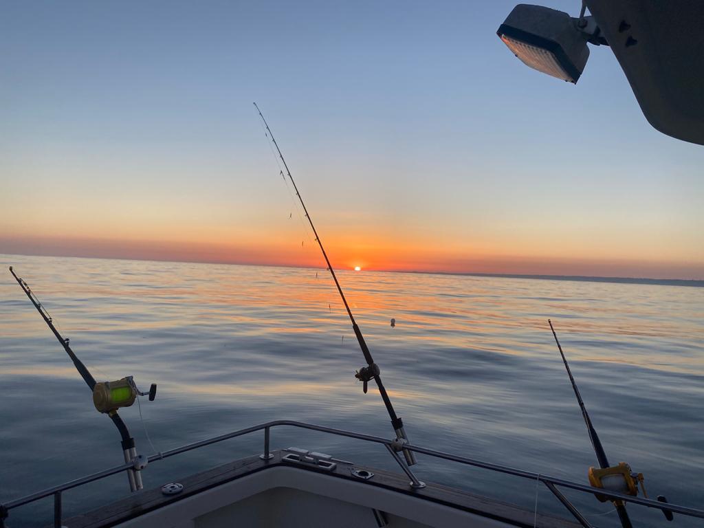 Sea Fishing Trips Poole Dorset Silver Gannet Charters